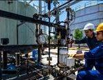 معاون توسعه مدیریت و سرمایه انسانی وزیر نفت: وضع حقوق و دستمزد کارکنان پیمانکار صنعت نفت ساماندهی میشود